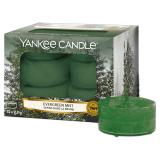 Doftvärmeljus Yankee Candle Evergreen Mist