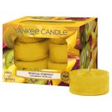Doftvärmeljus Yankee Candle Tropical Starfruit