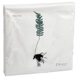 Ernst Servett Växter Ekbräken