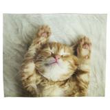 Gismo Fleecepläd Katt Offwhite