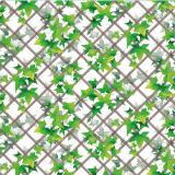 Klätterväxt Vaxduk Grön
