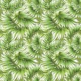 Palmblad Vaxduk Grön