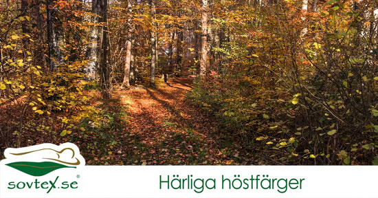 harliga-hostfarger